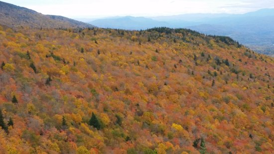 Stowe, VT: Partial view from Pinnacle