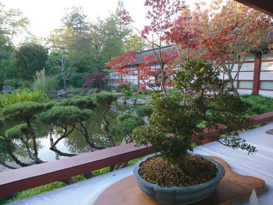 dalles rondes sur l 39 eau picture of jardin japonais nantes tripadvisor. Black Bedroom Furniture Sets. Home Design Ideas