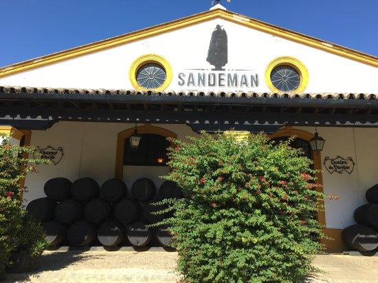 The House of Sandeman Jerez: photo4.jpg