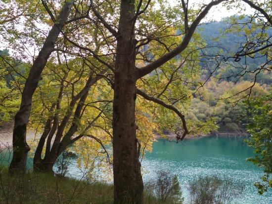 Akrata, اليونان: Πέτρινο, Βλάχος Παναγιώτης