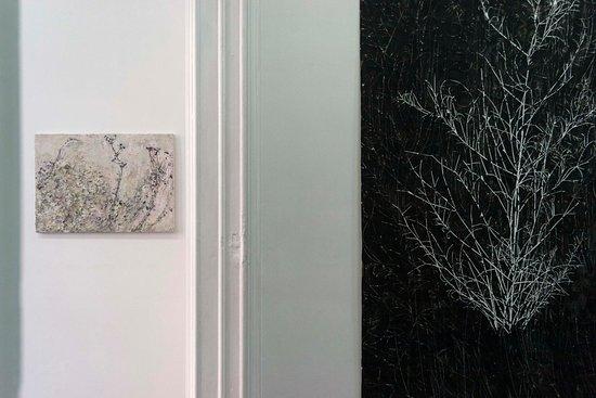 Shoobil Gallery