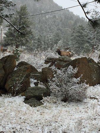 Blackhawk Lodges: photo0.jpg