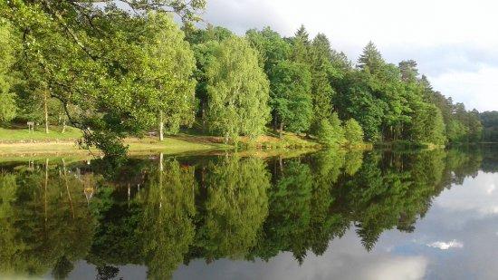 L'Auberge du Lac : vue de la terasse