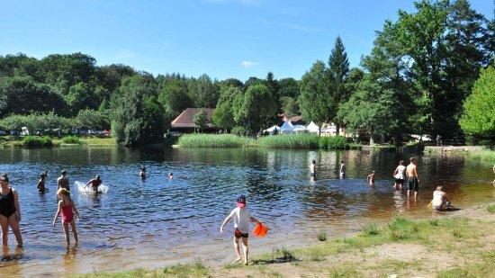 L'Auberge du Lac : plage