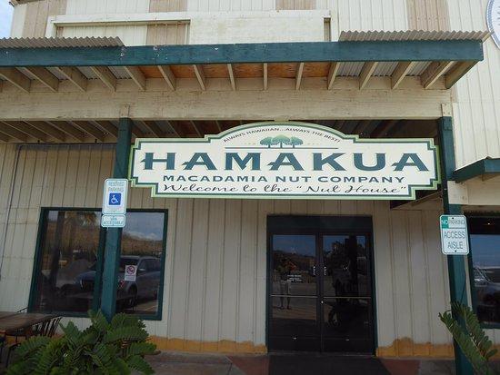 Kawaihae, HI: Hamakua Macadamia Nut Co...