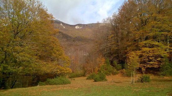 Opi, Italy: la parte piu' a valle vicino il ruscello