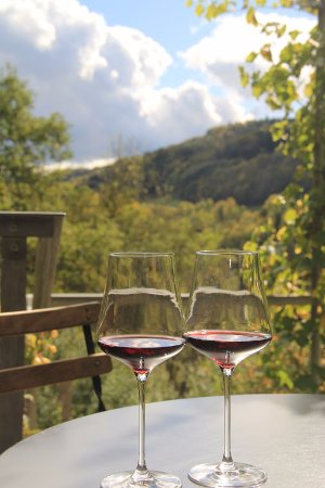 Rafz, Schweiz: Weingut Pircher in Eglisau
