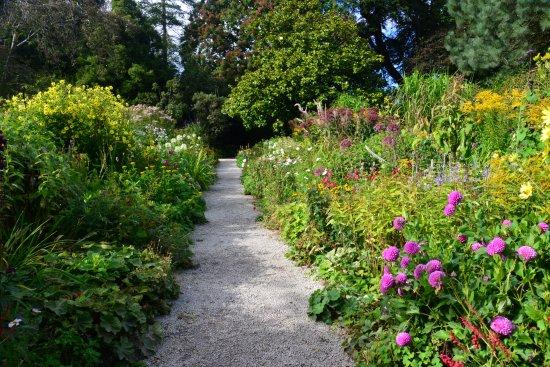 Mount Usher Gardens : garden