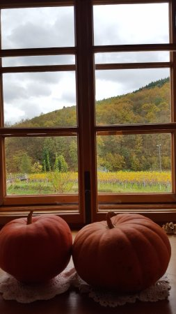 Senftenberg, Austria: Beautiful fall lunch at Restaurant Nigl
