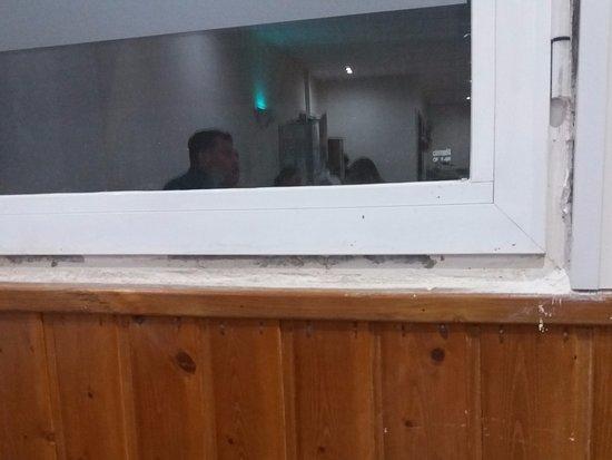 Blue Sea Costa Verde: ant pwder around Dining Room Window