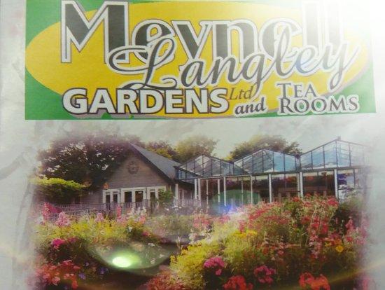 Meynell Langley Gardens