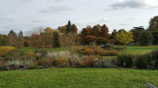 Chatenay-Malabry, Fransa: Superbe parc dans son drapé de couleurs automnales