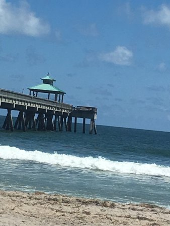 ディアフィールドビーチ Picture