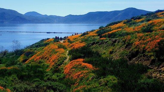 Hemet, Καλιφόρνια: photo6.jpg