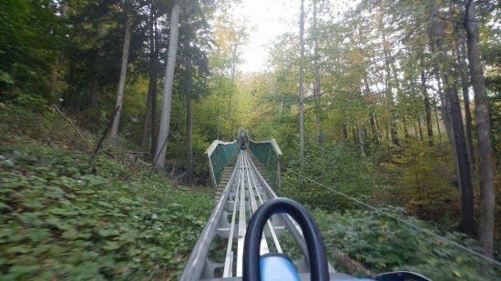 Blue Mountains, Canada: photo5.jpg