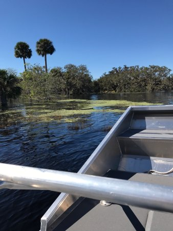 Central Florida Airboat Tours: photo4.jpg