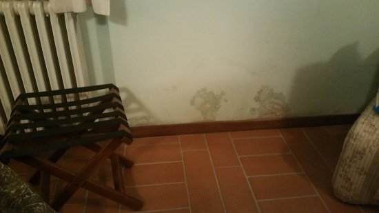 Monterchi, อิตาลี: Drab and in need of repair, the shower was pathetic.