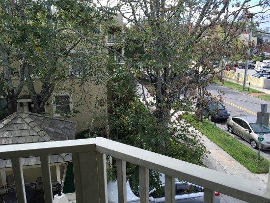The Wilmingtonian: photo5.jpg