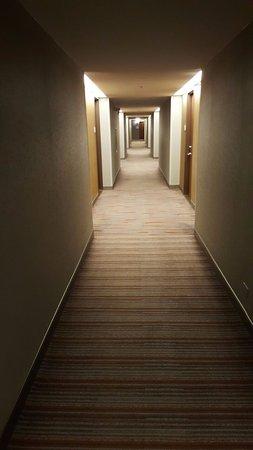 Hyatt Regency Chicago: corridor