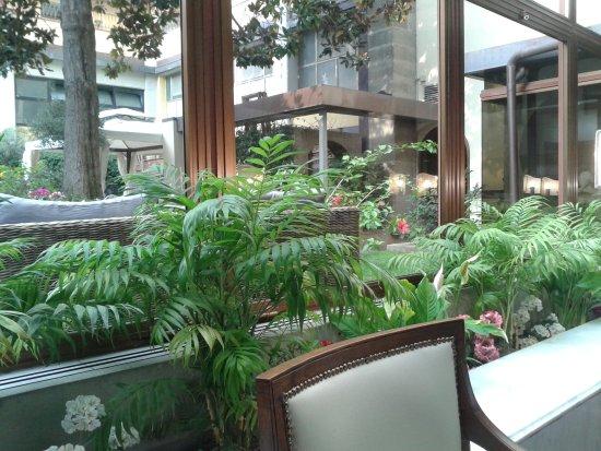 Croce di Malta Hotel: area giardino interno visto dall sala colazioni