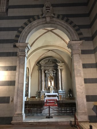 Basilica di San Francesco: photo4.jpg