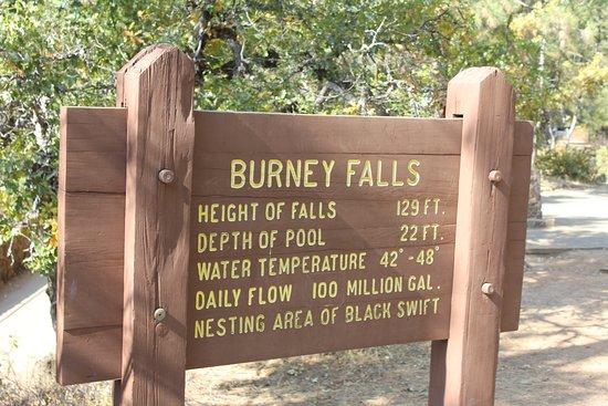 Burney Falls details