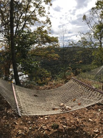 Barryville, Nova York: Beautiful views from the hammock high above!