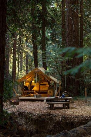 Entrance - Picture of Ventana Campground, Big Sur - Tripadvisor