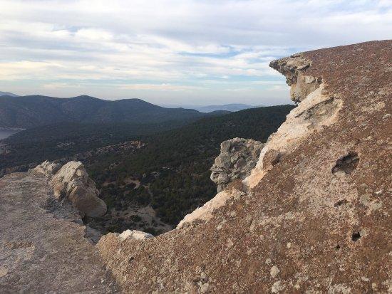 Paeonia Trails