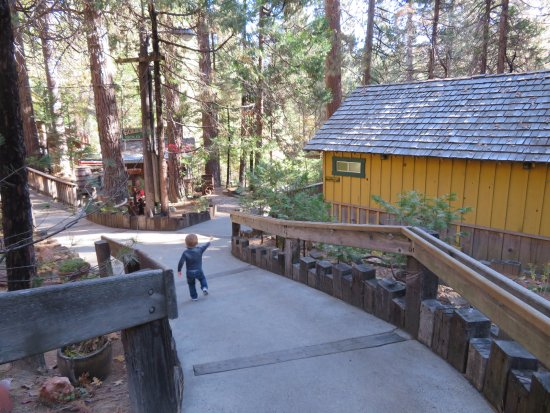 Fish Camp, CA: Great place to explore!!