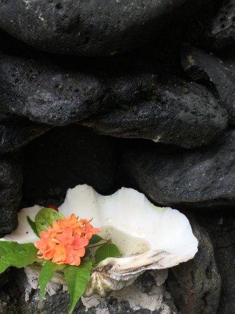 Paradise Taveuni 이미지