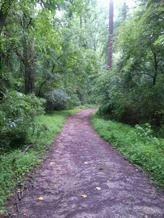 Durham, Carolina del Norte: Al Buehler Hiking Trails