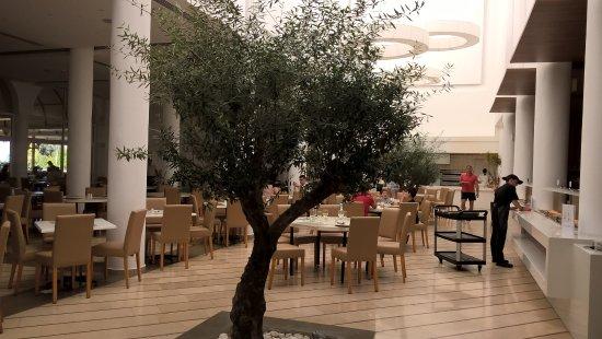 Lindos Royal Hotel: Олива в ресторане, ЖИВАЯ!