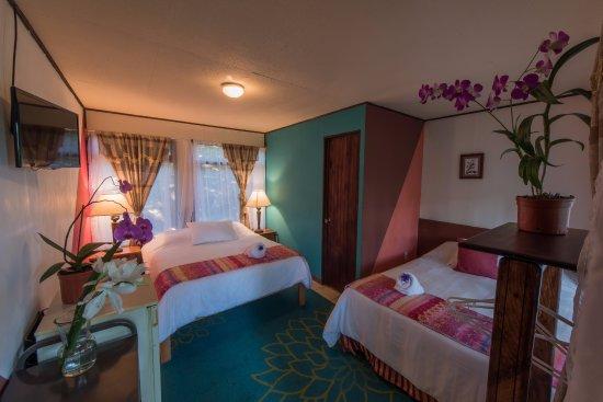 Hotel Jardines de Monteverde Photo