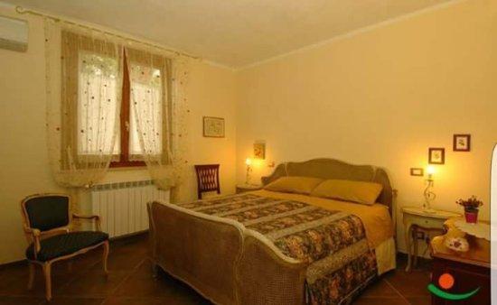 Poggio Murella, Italy: FB_IMG_1509316692541_large.jpg