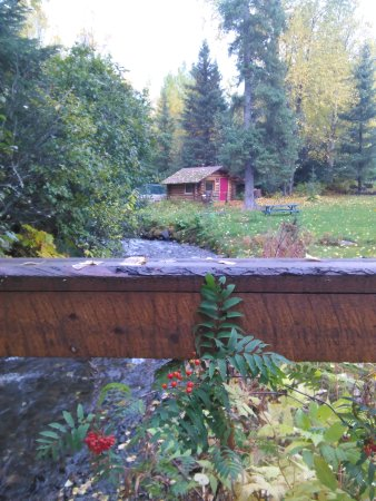 "Hope, AK: Cabin #5, ""The Hobbit House"" sits right beside Bear Creek. Photo taken from our foot bridge."