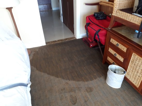 Treasure Isle Hotel: My bedroom floor regularly flooded - no obvious route in - the whole building was waterlogged.