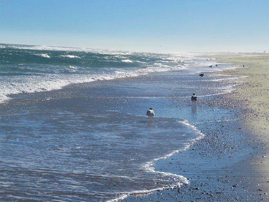 Best Hotels In Beach Haven Nj