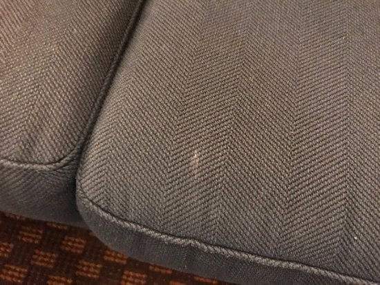 The Cove Hotel, an Ascend Hotel Collection Member: Stains on suite couch