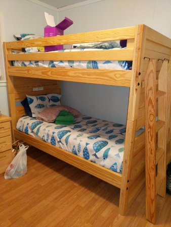 Set One Of The Bunk Beds 2 Sets In The Room Picture Of Hilton