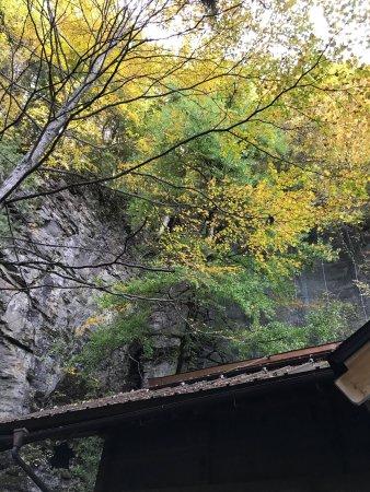 Otaki-mura: Ξενοδοχεία