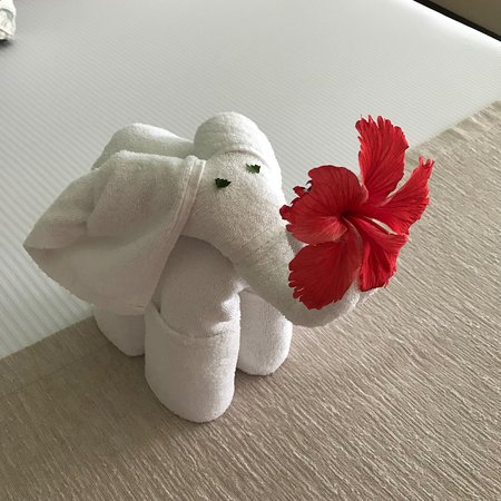A Different Towel Origami Everyday Picture Of Azul Beach Resort
