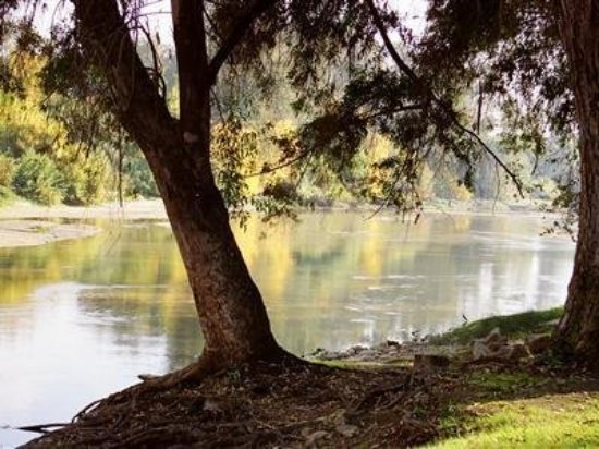 Reedley, Калифорния: Countryside
