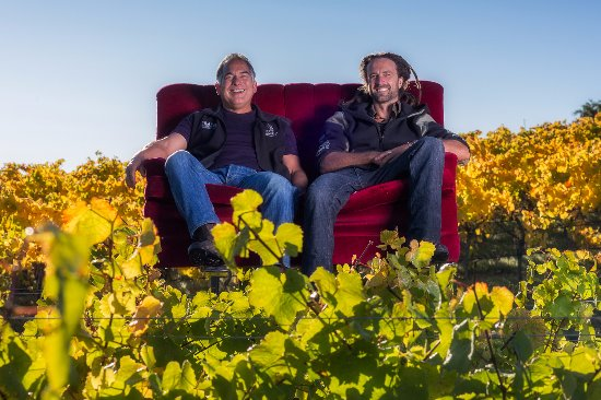 Bronte, Nieuw-Zeeland: Patrick & Luke - owner/winemaker and vineyard manager, relaxing in the vineyard!