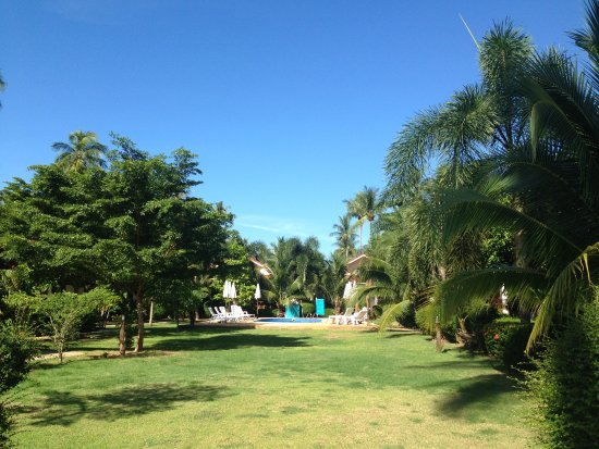 Hana Lanta Resort: 敷地内には緑がたくさん