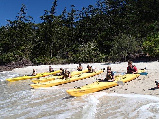 Salty Dog Sea Kayaking Reviews
