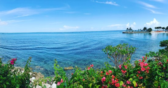 Moon Palace Jamaica: photo5.jpg