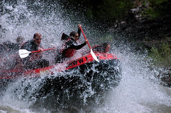 Snake River Whitewater Rafting en...
