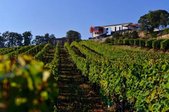 Tour e degustação de vinhos de...
