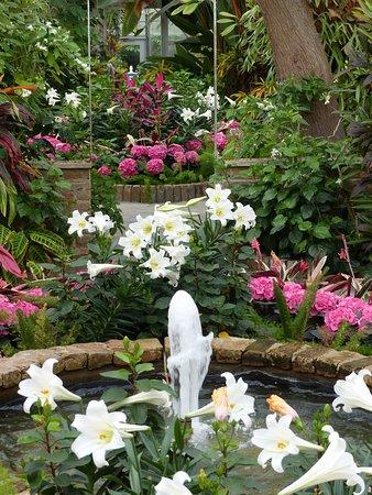 Theodore, ألاباما: A greenhouse fountain